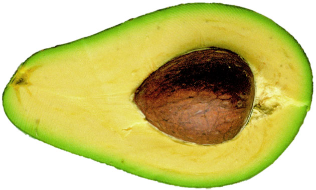 Picture of half avocado with stone.